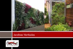 La novedad en la jardinería desde hace algunos años que tuvo su inicio en Europa es la jardinería vertical.