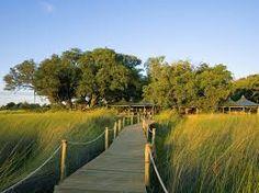 Choose a Botswana safari & experience the magical Okavango Delta, witness big game action in the Chobe & meet San tribesmen in the Makgadikgadi. Okavango Delta, Travel Articles, African Safari, Beautiful Islands, Holiday Travel, Lodges, Best Hotels, Country Roads, Adventure