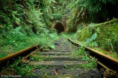 Abandoned places like this are so cool! :D