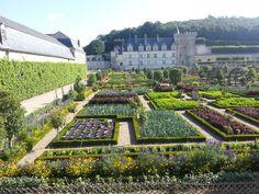 Villlandry ~ my favorite chateau in the Loire - Modern Potager Garden, Garden Pool, Kew Gardens, Outdoor Gardens, Loire Valley France, Herb Garden In Kitchen, Rose Trees, Classic Garden, Public Garden