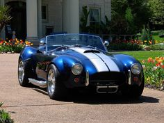 Gregs shelby cobra