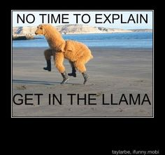 No time to explain, GET IN THE LLAMA