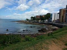 (Salvador - Bahia)