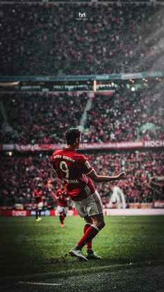 Y y lewandowski Robert Lewandowski, Football Is Life, Arsenal Football, Fifa 17, Bayern Munich Wallpapers, Fc Hollywood, Bundesliga Live, Champions League, Fc Bayern Munich