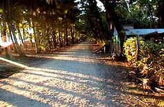 Dominical, Costa Rica... Two dirt roads and the beach, I could have stayed here forever.