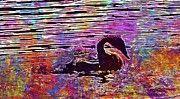 "New artwork for sale! - "" Swan Young Animal Bird Waters  by PixBreak Art "" - http://ift.tt/2uA5DJo"