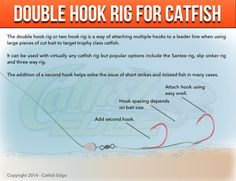 1000 images about catfish edge catfishing tips on for Best catfish rig for bank fishing