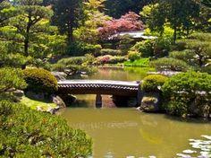 Washington Park Arboretum, Seattle Washington