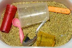 Jeu de transvasement de lentilles avec différents ustensiles de cuisine.  sensory bean - bac sensoriel - transfer - transvasement - lentil - kitchen utensils