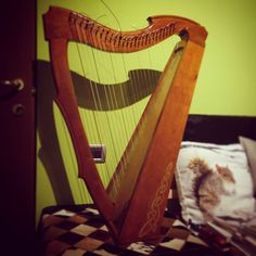 My Limerick folk lap harp, bought in rough kit from USA, then refined and assembled by me, following the professional advices of Italian lutists. She's wholly made of solid cherry wood and birch plywood for the board, 26 nylon strings. High quality, amazing powerful sound. You can find her (and a LOT more) on www.harpkit.com) - the lutists - and friends - who helped me are the amazing Paola Brancato and Marco Pasquino - www.paolabrancato.net  &  www.marcopasquino.com