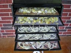 Dehydrating Onions - dehydrating onions and waste - #TaylorMadeRanch