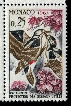 Birds Perched, Birds Flying, Birds aground - Stamp Community Forum - Page 15