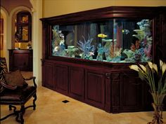 diy aquarium furniture stands are an integral part of every aquatic system. The aquarium stand should be sturdy so that it can bear the weight of a filled a Saltwater Aquarium Setup, Wall Aquarium, Aquarium Stand, Home Aquarium, Aquarium Design, Saltwater Tank, Aquarium Fish Tank, Aquarium Ideas, Small Fish Tanks