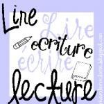 Reading strategies - immersion French