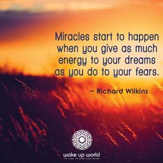 Miracles start to happen when you give as much energy to your dreams as you do to your fears. -Richard Wilkins
