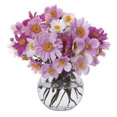 Florabundance anemone vase £26