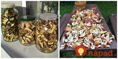 Opýtali sme sa skúsených hubárov, ako najlepšie skladovať a uchovať huby, ktoré nestihnete spotrebovať hneď. Samozrejme, môžete ich dať napríklad zamraziť, existujú však aj iné metódy, ktoré sa skutočne oplatí poznať. Toto sú overené metódy slovenských hubárov.