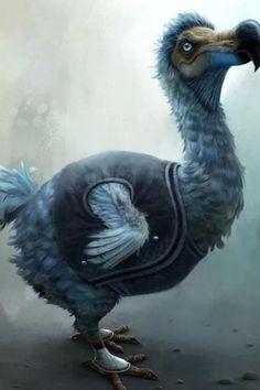 Wonderland:  The #Dodo #Bird.