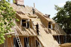 http://www.hiss-reet.de/images/dachreet/qualitaet/reetdachhaus_big.jpg