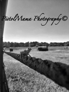 My girl Chelsea's amazing shots! PistolMama Photography