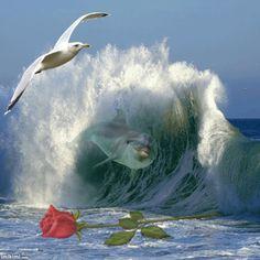 beautiful wave - by bruecke http://imikimi.com/main/view_kimi/2a0CS-1fk