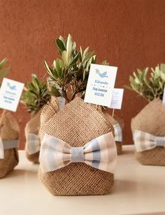 handmade wedding favor with olive tree- bomboniera handmade con ulivo handmade wedding favor with olive tree - Plant Wedding Favors, Handmade Wedding Favours, Wedding Gifts, Baby Wedding, Creative Gift Wrapping, Creative Gifts, Diy And Crafts, Crafts For Kids, Baby Event