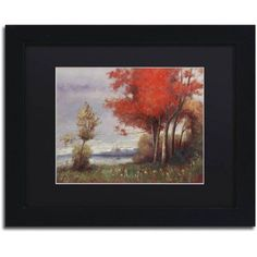 Trademark Fine Art Landscape with Red Trees Canvas Art by Daniel Moises, Black Matte, Black Frame, Size: 16 x 20