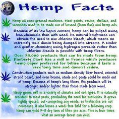 great hemp facts