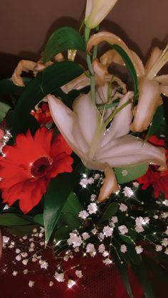 Cool Instagram Pictures, Creative Instagram Photo Ideas, Cool Girl Pictures, Instagram Story Ideas, Flowers Instagram, Mood Instagram, Beautiful Photos Of Nature, Beautiful Flowers, Love Rose Flower