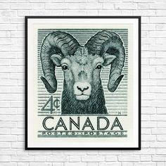 Sheep sheep print sheep art sheep poster bighorn by CanadaStampArt Sheep Art, Moose Art, Poster Size Prints, Art Prints, Big Horn Sheep, Cute Sheep, Historical Art, Postage Stamps, Horns