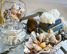 seashell table decor
