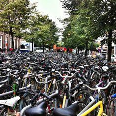 Bicicletas en Gante.