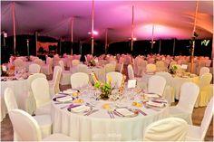 Celebra tu boda con nosotros en Ibiza/Celebrate your wedding with us in Ibiza