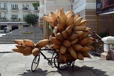 Ho Chi Minh City Ho Chi Minh City, Vietnam, Wreaths, Fall, Home Decor, Autumn, Decoration Home, Door Wreaths, Fall Season