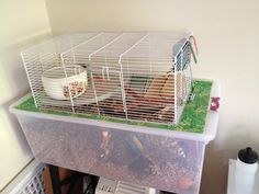 I used the cage top of a Grreat Choice (Petsmart) hamster cage. The inch bar spacing would only be appropriate for large adult dwarf hamsters, . Syrian Hamster Cages, Large Hamster Cages, Hamster Bin Cage, Gerbil Cages, Hamster Life, Baby Hamster, Hamster Toys, Hamster Stuff, Hamster Ideas