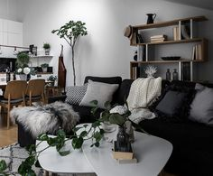 Livingroom with grey, pillows, plants and figtree. See more pics at @kreavilla