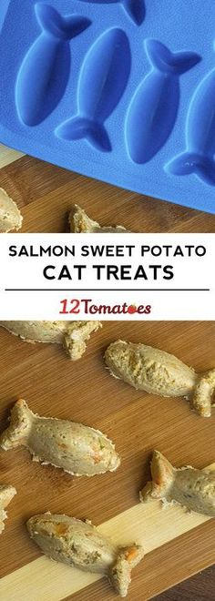 Salmon And Sweet Potato Cat Treats