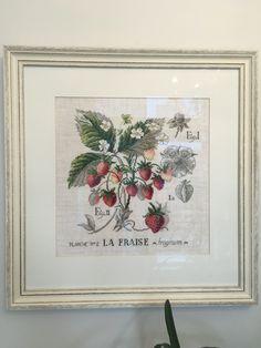 La Fraise , Etudes de botanique Veronique Enginger. Клубника.