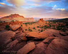 Thinking in November I need a road trip out west.... Utah I believe is where I will end up!!!