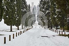 Inverigo province of Como - The avenue of cypress trees during a snowfall in the month of February 2015