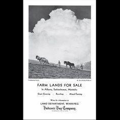 Farm lands for sale in Alberta, Saskatchewan, Manitoba. 19th century poster