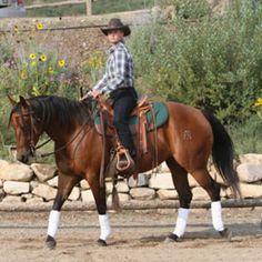 Rider Biomechanics. Tune-up your position in the saddle for the best response from your horse.