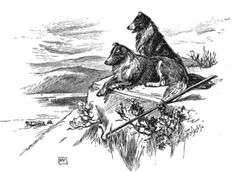 illustration sheepdogs looking over valley