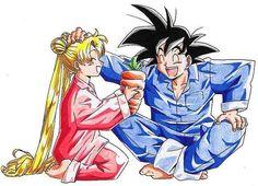 Sailor Moon and DBZ   #anime