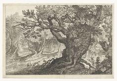Roelant Savery | Vossenjacht in een bos, Roelant Savery, Anonymous, 1587 - 1639 | In een bos jaagt een man met zijn honden op een vos. Pendant van 'Hertenjacht in een moeras'.