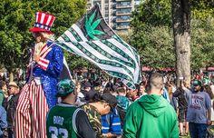 Top Travel Tips for the Boston Freedom Rally via #CannabisNow