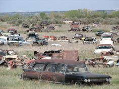 Hearse and car cemetery. Abandoned Buildings, Abandoned Houses, Abandoned Places, Cadillac, Flower Car, Rust In Peace, Rusty Cars, Barn Finds, Station Wagon