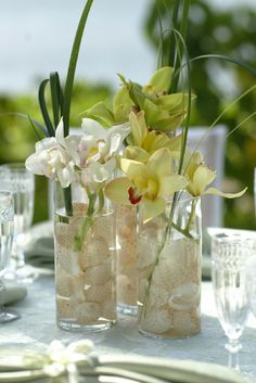 Shell & green orchid centerpiece by Designs by Hemingway, HNL