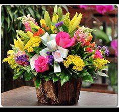 14453657332911575.gif (400×375) Plants, Plant, Planets