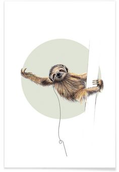 Sloth als Premium Poster von Janine Sommer | JUNIQE